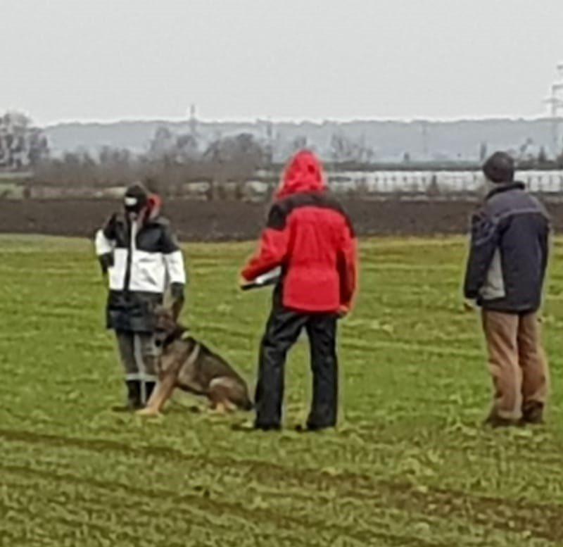 hundesport-novemnber-27